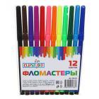 ClipStudio Фломастеры 12 цветов с цветным колпачком, пластик, в ПВХ пенале