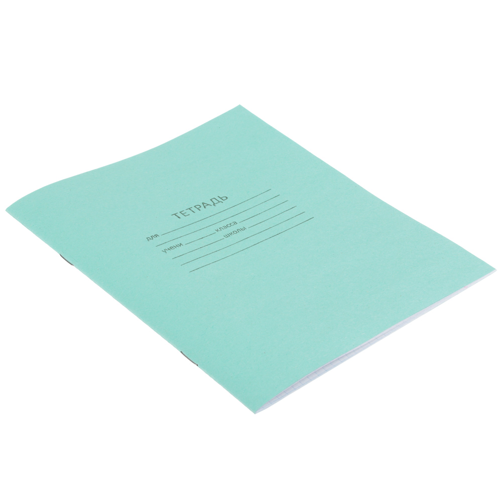 Тетрадь школьная БЕЛЫЕ ЛИСТЫ 12 листов в клетку, зеленая обложка - 2