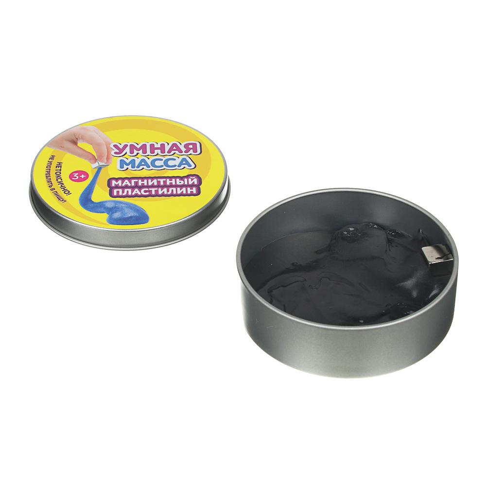 LASTIKS Умная масса, 58-60гр, полимер, 9х2,5см, 2 дизайна - 2